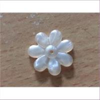 1 Acryl Blüte