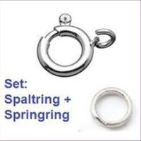 1 Federring m. Spaltring 6mm