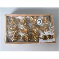 1 Pack Mini Engel gold