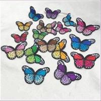 1 Aufnähmotiv Schmetterling 7,6x4,2cm