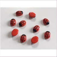 10 Glascabochons Käfer