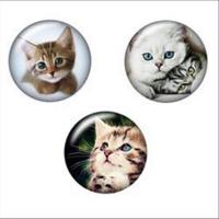 1 Cabochon rund 18mm Katzen